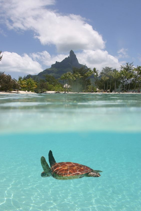 Ostrov Maurícius láka v lete aj zime